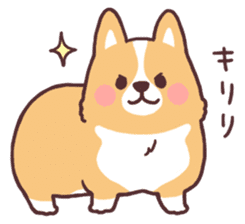 fluffy fat dog2 sticker #6503836