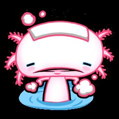 pink Axolotl live
