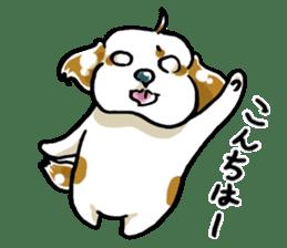 Freely Shih Tzu sticker #6520184