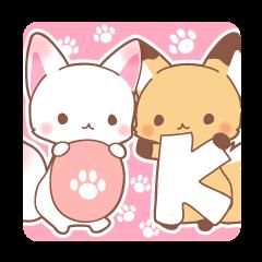 Two fox