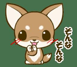 Chihuahuatan 5 sticker #6544984