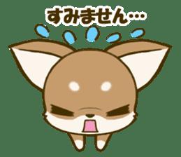 Chihuahuatan 5 sticker #6544986