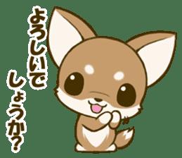 Chihuahuatan 5 sticker #6544992