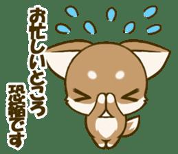 Chihuahuatan 5 sticker #6544996
