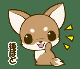 Chihuahuatan 5 sticker #6544998