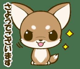 Chihuahuatan 5 sticker #6545000