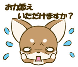 Chihuahuatan 5 sticker #6545001