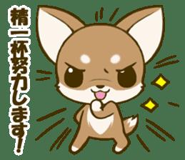 Chihuahuatan 5 sticker #6545002