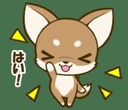 Chihuahuatan 5 sticker #6545005