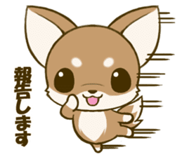 Chihuahuatan 5 sticker #6545009