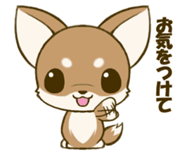 Chihuahuatan 5 sticker #6545011