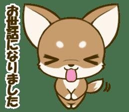 Chihuahuatan 5 sticker #6545022