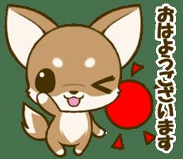 Chihuahuatan 5 sticker #6545023