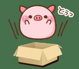 The Colo pigs sticker #6564681