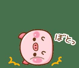 The Colo pigs sticker #6564683