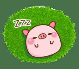 The Colo pigs sticker #6564687