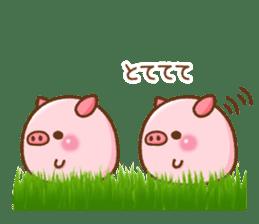 The Colo pigs sticker #6564692