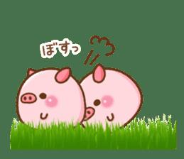 The Colo pigs sticker #6564693