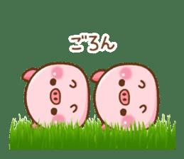The Colo pigs sticker #6564694
