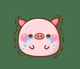 The Colo pigs sticker #6564699