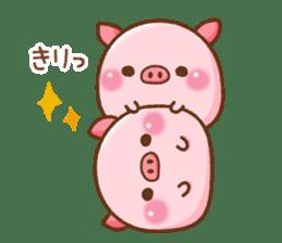 The Colo pigs sticker #6564700