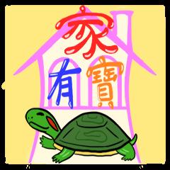Hey~Turtle turtle!