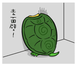 Hey~Turtle turtle! sticker #6614785