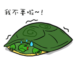 Hey~Turtle turtle! sticker #6614787