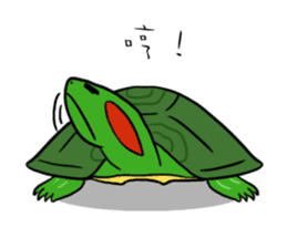 Hey~Turtle turtle! sticker #6614792