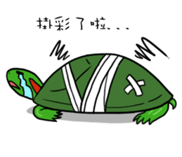 Hey~Turtle turtle! sticker #6614808
