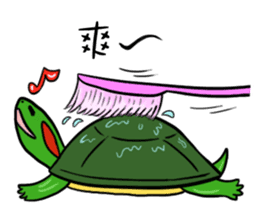 Hey~Turtle turtle! sticker #6614813