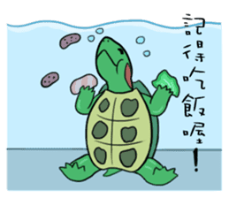 Hey~Turtle turtle! sticker #6614818