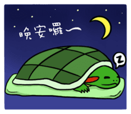 Hey~Turtle turtle! sticker #6614823