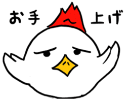 Chicken555 sticker #6626655