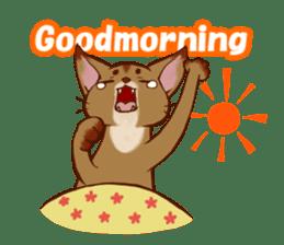 CAT-Abyssinian sticker #6658288