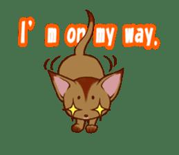 CAT-Abyssinian sticker #6658324