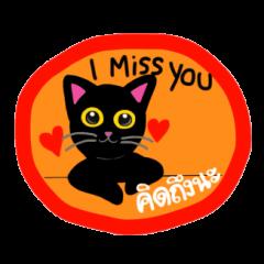 Baloo Black cat