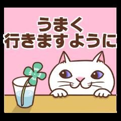 Cheering cats