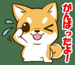 Japanese Shiba Inu tan sticker #6710295