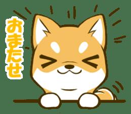 Japanese Shiba Inu tan sticker #6710311