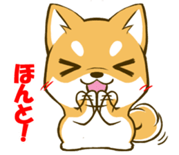 Japanese Shiba Inu tan sticker #6710319