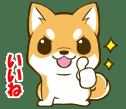 Japanese Shiba Inu tan sticker #6710322