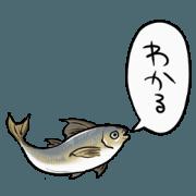 สติ๊กเกอร์ไลน์ horse mackerel that moves