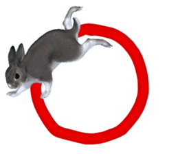 Expressive rabbit sticker sticker #6751451