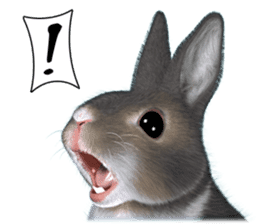 Expressive rabbit sticker sticker #6751458
