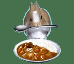 Expressive rabbit sticker sticker #6751463