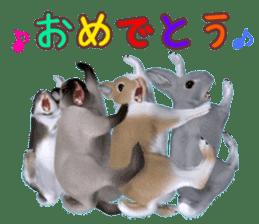 Expressive rabbit sticker sticker #6751468
