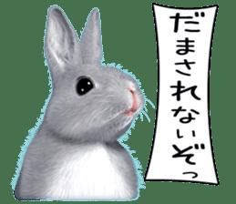 Expressive rabbit sticker sticker #6751469
