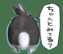 Expressive rabbit sticker sticker #6751470