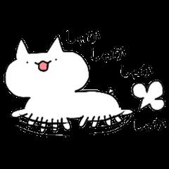 I'm cat!!!